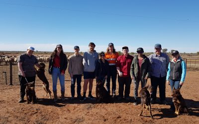 Western Landcare Youth Network 2017 Report